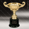 Click this Image to visit the    Economy Gold Series Cup Trophy Awards category.