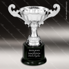 Click this Image to visit the    Economy Silver Series Cup Trophy Awards category.