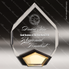 Click this Image to visit the    Gold Accented Acrylic Awards category.