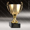 Click this Image to visit the  Gold Cup Trophy Awards category.
