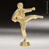 Click this Image to visit the  Karate Trophy Awards category.