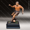 Click this Image to visit the Premium Champion Soccer Trophies category.