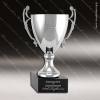 Click this Image to visit the  Silver Cup Trophy Awards category.