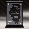 Click this Image to visit the   U.S. State Shaped Acrylic Awards category.