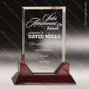 Acrylic  Rosewood Accented Rectangle Award Sales Trophy Awards