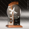 Acrylic Wood Accented Artisan Wood Sculpted with Aluminum Accent Trophy Awa Wood Accented Acrylic Awards