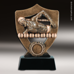 Resin Academy Shield Series Swimming Male Trophy Award Academy Shield Resin Trophy Awards