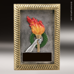 Kids Resin Plaque Series Victory Torch Trophy Awards Achievement Trophy Awards