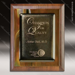 Engraved Walnut Plaque Brown Metallic Fusion Art Award Art Glass Plaque Collection