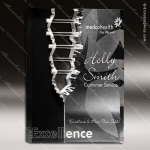 Acrylic Black Accented Rectangle Crevice Split Trophy Award Black Accented Acylic Awards