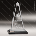 Acrylic Black Accented Star Impress Trophy Award Black Accented Acylic Awards