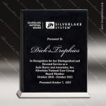 Embossed Etched Leather Desktop Plaque Chrome Plated Base Award Black Silver Leather Items