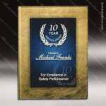 Acrylic Plaque Blue Accented Wall Placard Award Blue Accented Acrylic Awards