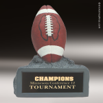 Resin Color Series Football Trophy Award Colored Resin Trophy Awards