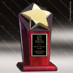 Star Casting on Rosewood Piano Finish Base. Employee Trophy Awards