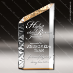 Acrylic Gold Accented Self Standing Slant Trophy Award Employee Trophy Awards