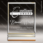 Acrylic Gold Accented Rectangle Rib Award Employee Trophy Awards