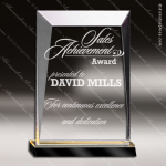 Acrylic Gold Accented Rectangle Prism Trophy Award Employee Trophy Awards
