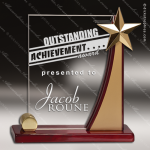 Acrylic  Rosewood Accented Rising Star Award Employee Trophy Awards
