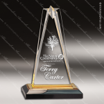 Acrylic Gold Accented Star Impress Trophy Award Gold Accented Acrylic Awards