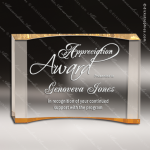 Acrylic Gold Accented Curve Wedge Crescent Trophy Award Gold Accented Acrylic Awards