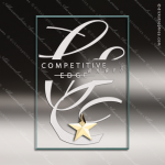 Macina Star Glass Gold Accented Rectangle Trophy Award Gold Accented Glass Awards