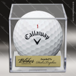 Engraved Clear Acrylic Golf Ball Display Case Golf Gifts & Awards