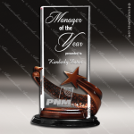 Acrylic Metal Accented Resin Star Clear Rectangle Trophy Award Metal Accented Acrylic Awards