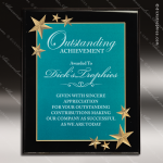 Engraved Acrylic Plaque Green Star Recognition Wall Placard Award Sales Trophy Awards