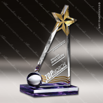 Acrylic Gold Accented Star Slanted Trophy Award Sales Trophy Awards