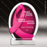 Acrylic Red Accented Pink Ribbon Breat Cancer Awareness Trophy Award Sales Trophy Awards