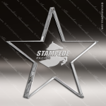Crystal  Star Constellation Series Paperweight Trophy Award Star Shaped Crystal Awards