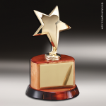 Gold Star On Base Star Themed Trophy Awards