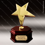 Traditional Gold Rising Star Trophy Award Star Trophy Awards