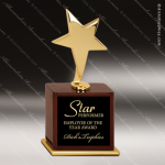 Gold Star Award Star Trophy Awards