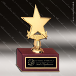 Star Casting on Rosewood Piano Finish Base. Star Trophy Awards