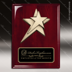 Engraved Rosewood Plaque Black Plate Star Cast Logo Award Star Trophy Awards