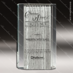 Glass Silver Accented Rectangle Cirlicue Trophy Award Starphire Accented Glass Awards