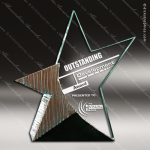 Acrylic Stone Accented Star Brilliance Trophy Award Stone Accented Acrylic Awards