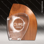 Acrylic Wood Accented Artisan Sculpted Trophy Award Wood Accented Acrylic Awards