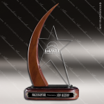 Acrylic Wood Accented Tipping Point Star Trophy Award Wood Accented Acrylic Awards
