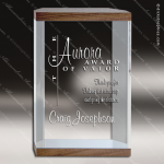 Acrylic Wood Accented Free Standing Rectangle Walnut Trim Trophy Award Wood Accented Acrylic Awards