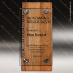 Wood Accented Floating Acrylic Brace Trophy Award Wood Accented Trophy Awards