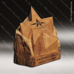 Wood Accented Next Star Trophy Award Wood Accented Trophy Awards
