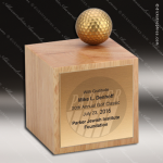 Wooden Square Cube Player's Choice II Trophy Award Wood Awards
